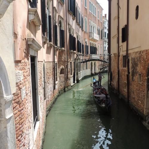 Venice V1.4